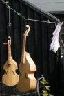 viols on the washing line